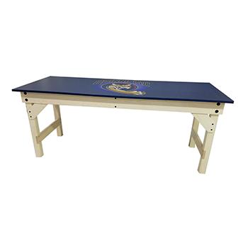 Combination Lab Table/Desk